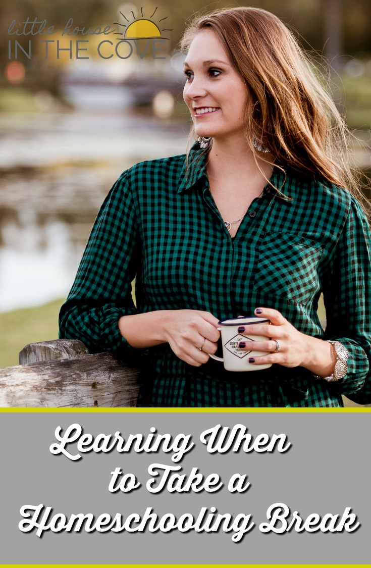 Learning when to take a homeschooling break is just as important as picking out the curriculum that will meet your child's needs.