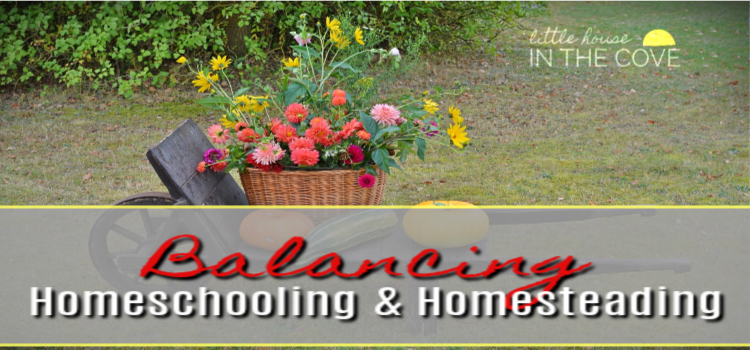 Balancing homeschooling and homesteading can be tricky. However, it is completely doable. Here are some ways that we are keeping the two balanced and in check.