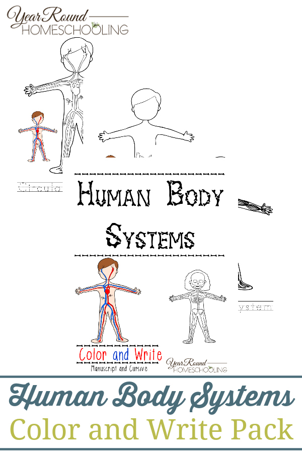 FREE Human Body Systems Color and Write Pack