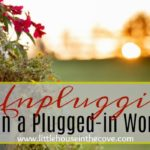 Unplugging in a Plugged-in World