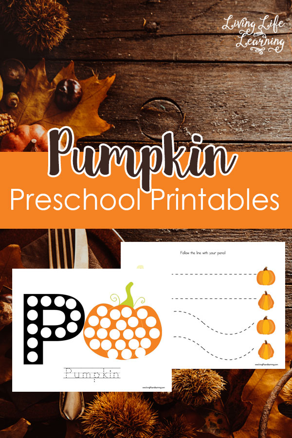 Visiting pumpkin patches seem to be the perfect way to bring in fall. Why not add a little pumpkin fun into your homeschooling preschool day with this cute packet.