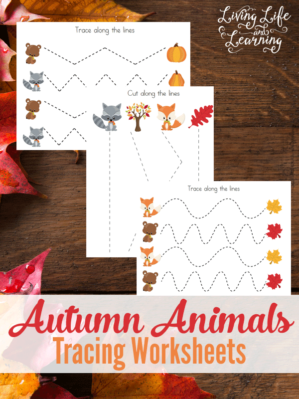 As we all know working those fine motor skills are important when you are trying to teach a young one to write. These cute fall animal tracing sheets will not only help your young one practice but they will also make the exercise somewhat more enjoyable.